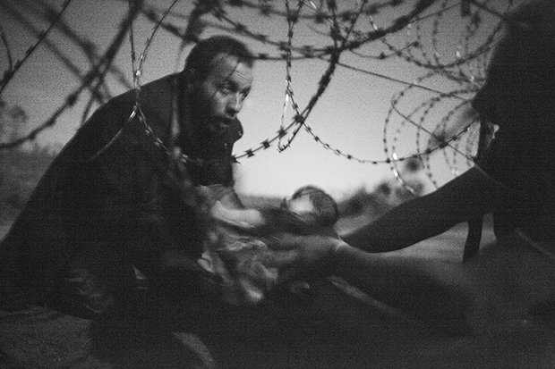 Migrants crossing the border from Serbia into Hungary.