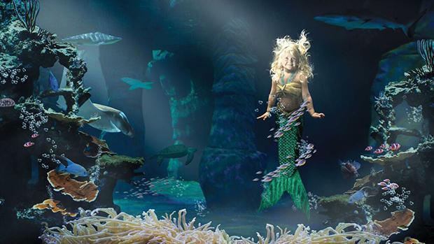 Caimbre-the-Mermaid