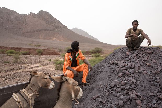 Two Mauritanians travel together with three donkeys (one not seen) on top of a train loaded with iron ore that crosses the Sahara desert from the mine at Zouérat, in northern Mauritania, to the Nouadhibou harbor, on the Atlantic coast of West Africa, as seen on 1st of October 2015. The travelers, who are usually traders that transport food and livestock, have to endure a 20-hour trip with periods of strong wind and temperatures that can reach 50 degrees Celsius in the summer.
