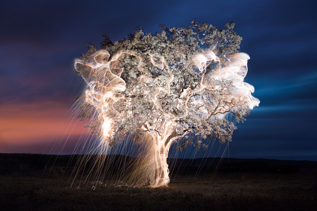 Artist uses Long Exposures to Create Ecstatic Light Sculptures