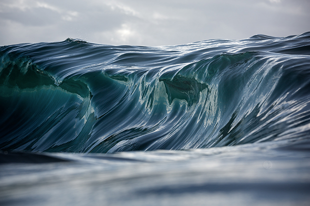 WarrenKeelan_Congeal