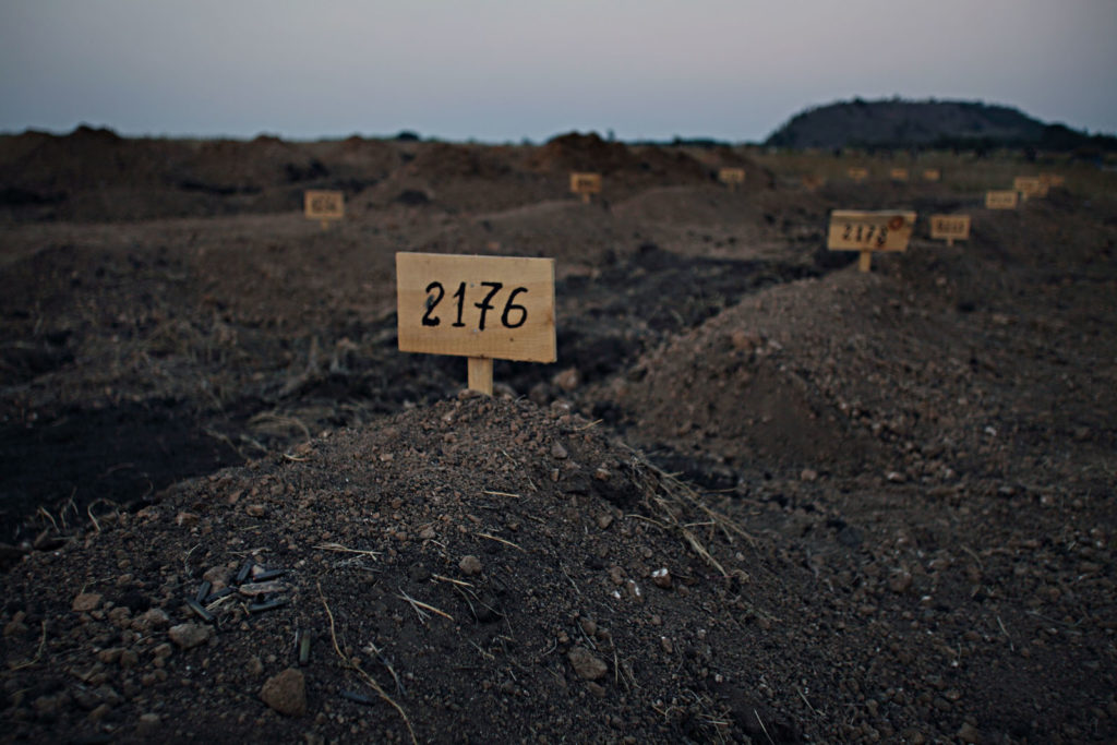 Only the numbers are seen on the graves of unknown pro-Moscow separatist fighters buried on Donetsk cemetery. August 31 2014, Donetsk, Eastern Ukraine Photographer: Dmitri Beliakov/ for Sunday Times