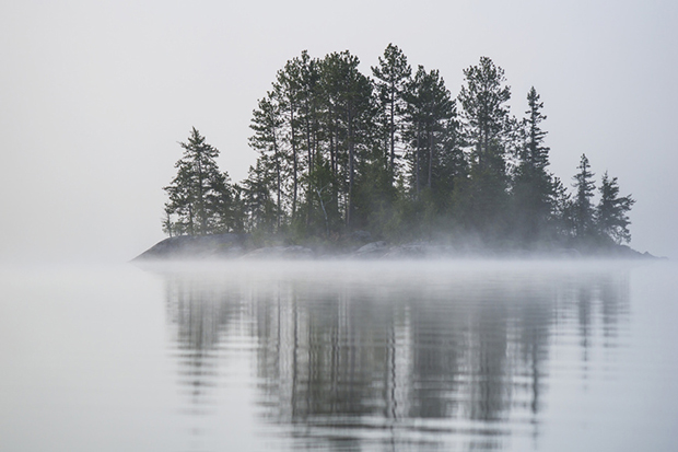 A Small Island With Trees Shrouded In Fog; Ontario, Canada