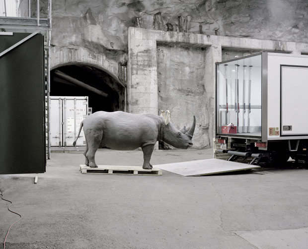 A moveable beast The exhibitions in the Natural History Collections in Bergen, Norway are undergoing a major restoration, and will be closed for at least five years. Due to this all the animals are beeing moved to a new temporary storage facility on the
