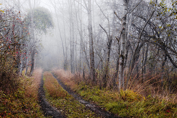how to make a photo look foggy