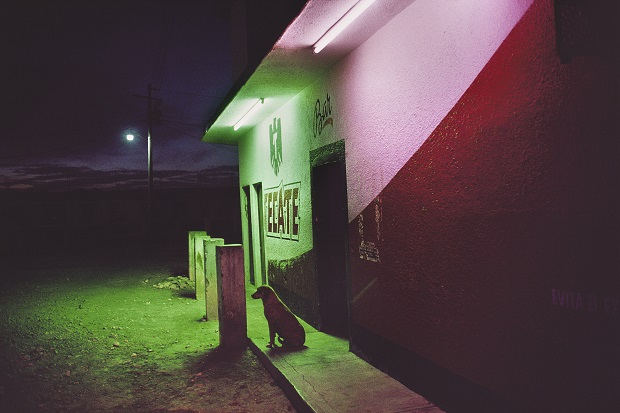 Capturing the Unexpected in the Streets of Mexico - Feature Shoot