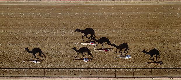 vertical-racing