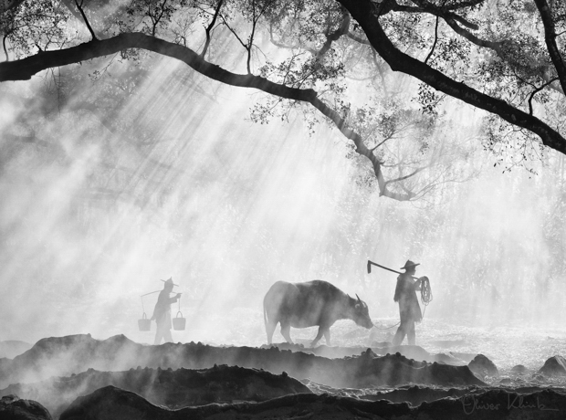 These Majestic Photos Capture a Disappearing Way of Life