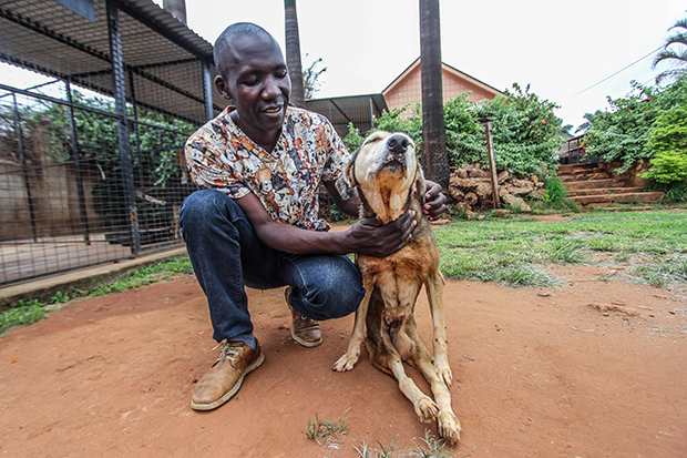 A Tale of Kindness and Courage in a Ugandan Animal Shelter