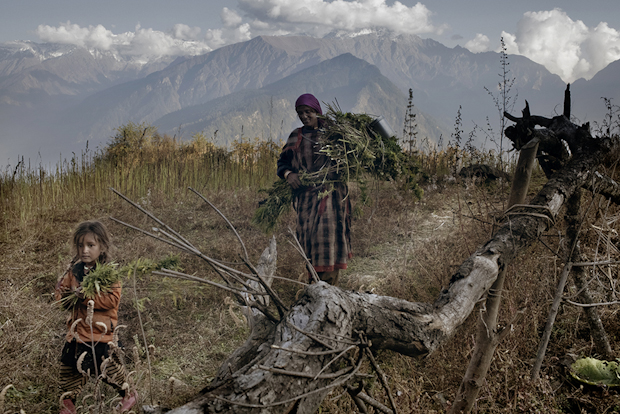 These Cannabis Farmers Carry Out an Ancient Tradition High in the Himalayas