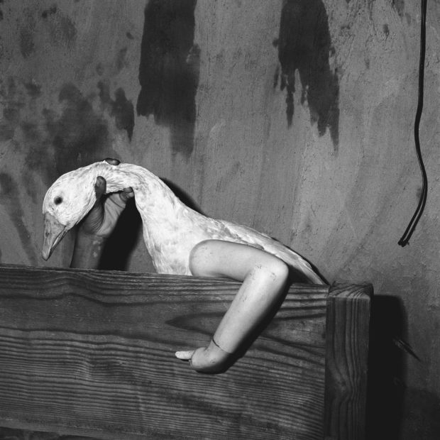 roger ballen photographer Trained as a geologist in new york, roger ballen travels across the world in the  1970s before publishing a first photography book in the united states, in 1977.