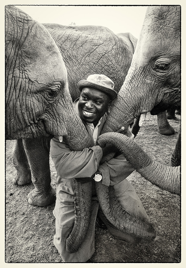 Orphaned Elephants and the People Who Rescued Them, in Photos
