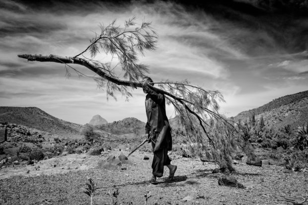 Picturing the Horrors of Climate Change in Southern Iran