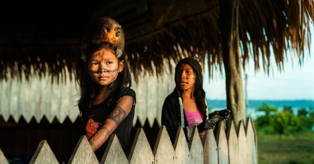 A Portrait of the Amazon on the Brink of Catastrophic Change