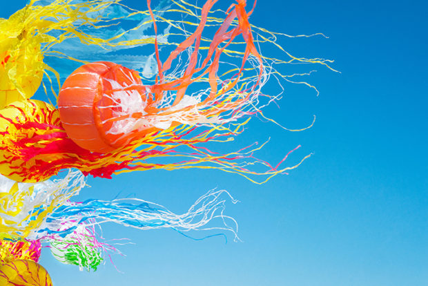 Colorful Photos of Fabric Floating in the Sky
