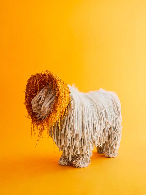 Dogs become high fashion models with sculptural cones of shame