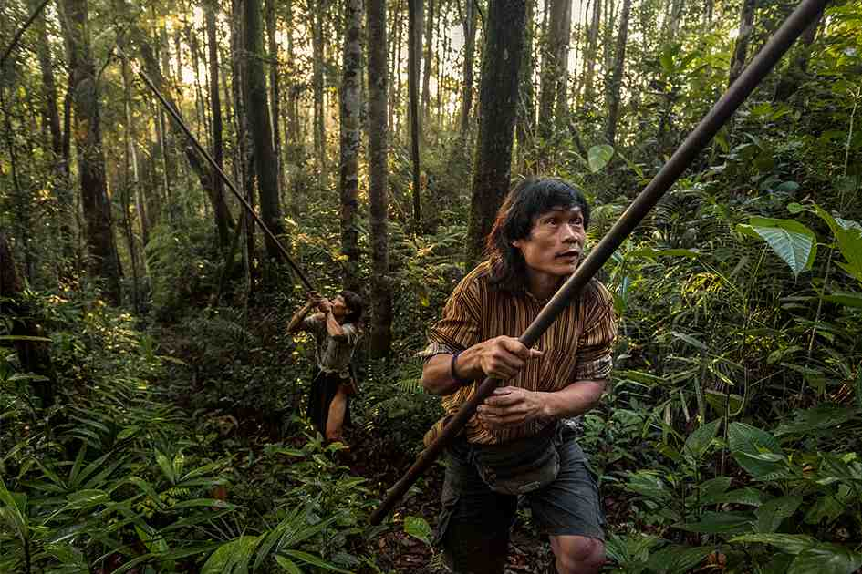 The Last Hunter-Gatherers of Borneo - Feature Shoot