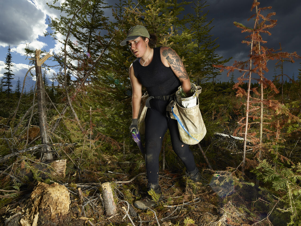 Blood, Sweat, and Tears: The Astonishing Labor of Tree Planters in Canada